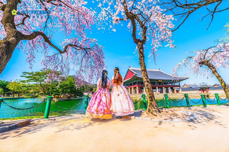 Kinh nghiệm dịch tiếng Hàn sang tiếng Việt chính xác và hấp dẫn